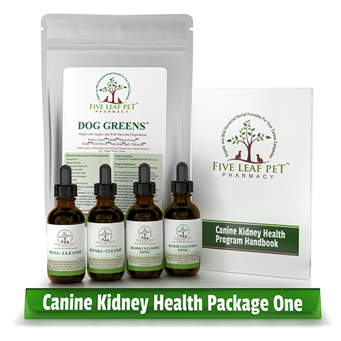 Canine Kidney Disease Natural Treatment